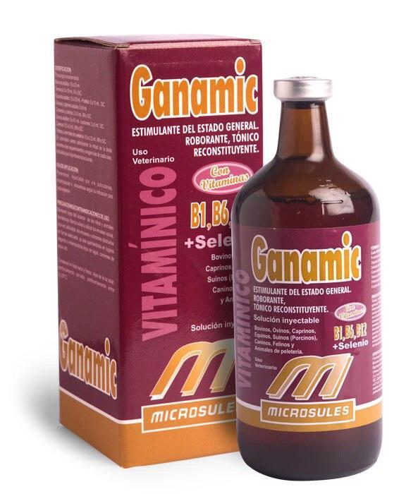GANAMIC